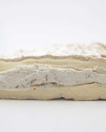 Fromagination feature Brie a la Truffe cheese