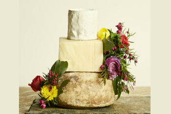 This is a picture of Fromagination's Summer Breeze Cake of Cheese