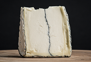 Cheese Outside Wisconsin