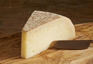 Wisconsin Sheep milk cheese