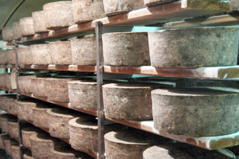 This is a picture of cheeses aging on a rack.