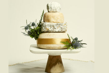 This is a picture of the Band of Gold Cake of Cheese from Fromagination.