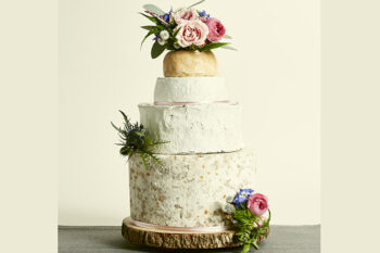 This is a picture of the Farmer's Daughter Cake of Cheese from Fromagination.