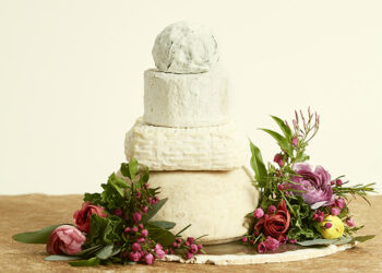 This is a picture of the June Bug Cake of Cheese from Fromagination.
