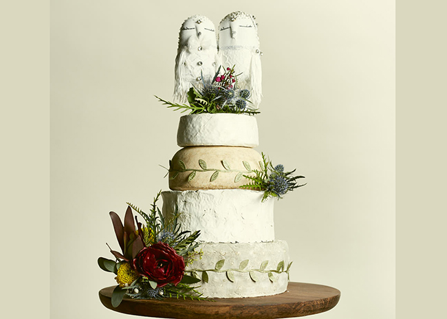 This is a picture of the Snow Bird Cake of Cheese from Fromagination.